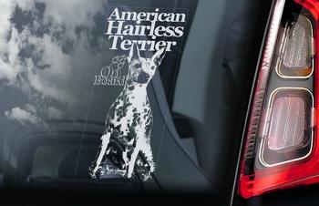 Amerikaanse Haarloze Terrier 2 Hondensticker voor op de auto  Per Stuk