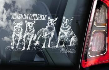 Australian Cattle Dog 1 Hondensticker voor op de auto  Per Stuk