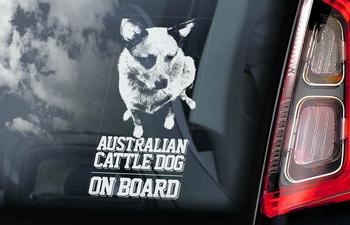 Australian Cattle Dog 2 Hondensticker voor op de auto  Per Stuk