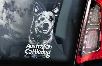 Australian Cattle Dog 3 Hondensticker voor op de auto  Per Stuk