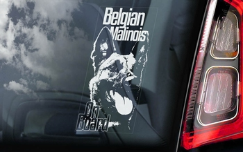 Belgian Malinois 6 Hondensticker voor op de auto  Per Stuk