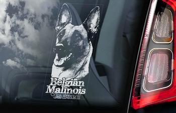 Belgian Malinois 16 Hondensticker voor op de auto  Per Stuk