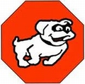 Bandit Bio Dieet Hond Pancreas 24 x 480 gram