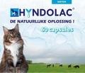 Hyndolac voor de Kat 60 Capsules