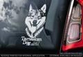 Tamaskan Dog 3 Hondensticker voor op de auto Per Stuk