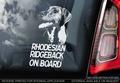 Rhodesian Ridgeback 1 Hondensticker voor op de auto Per Stuk
