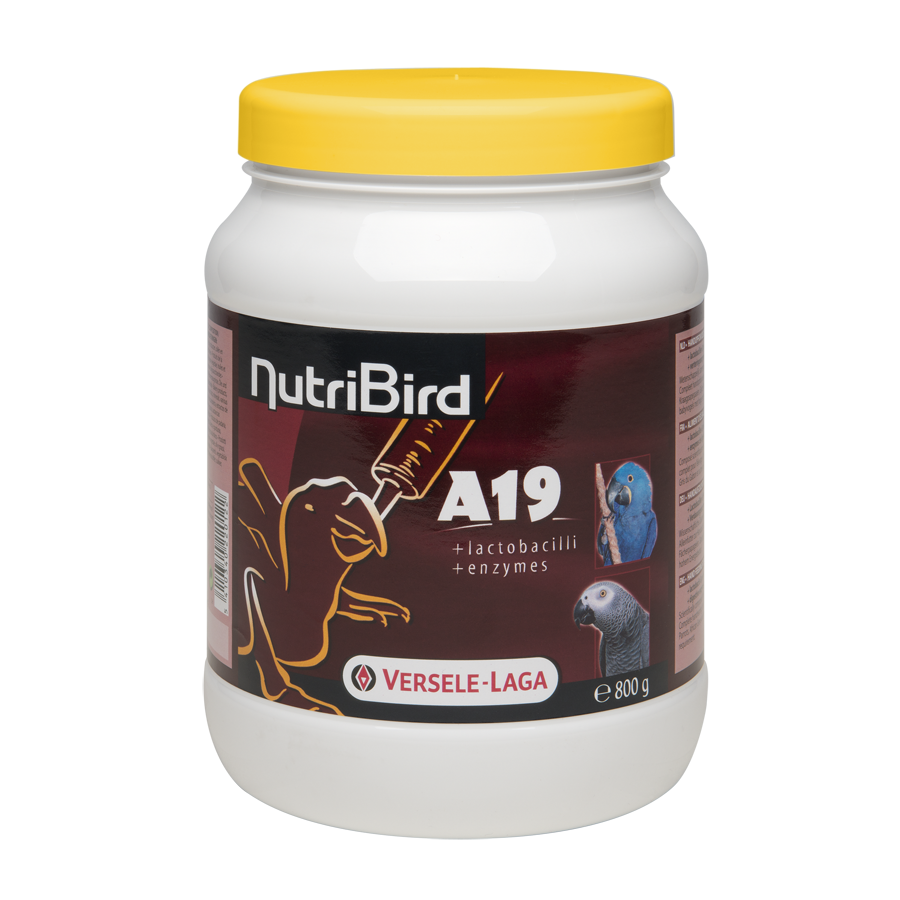 Nutribird A19  800 Gram