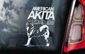 Amerikaanse Akita Inu 2  Hondensticker voor op de auto Per Stuk
