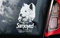 Samojeed 2  Hondensticker voor op de auto Per Stuk