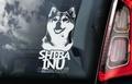 Shiba Inu 2 Hondensticker voor op de auto Per Stuk