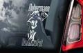Dobermann 3 Hondensticker voor op de auto Per Stuk