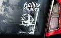 Agility is Shelties Hondensticker voor op de auto Per Stuk