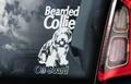 Bearded Collie 1 Hondensticker voor op de auto Per Stuk