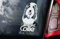 Bearded Collie 2 Hondensticker voor op de auto Per Stuk
