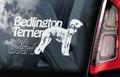 Bedlington Terrier 1 Hondensticker voor op de auto Per Stuk