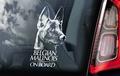 Belgian Malinois 1 Hondensticker voor op de auto Per Stuk