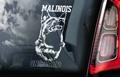 Belgian Malinois 3 Hondensticker voor op de auto Per Stuk