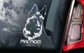 Belgian Malinois 2 Hondensticker voor op de auto Per Stuk