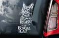 Bengal Cat 1 Kattensticker voor op de auto Per Stuk