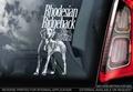 Rhodesian Ridgeback 2 Hondensticker voor op de auto Per Stuk